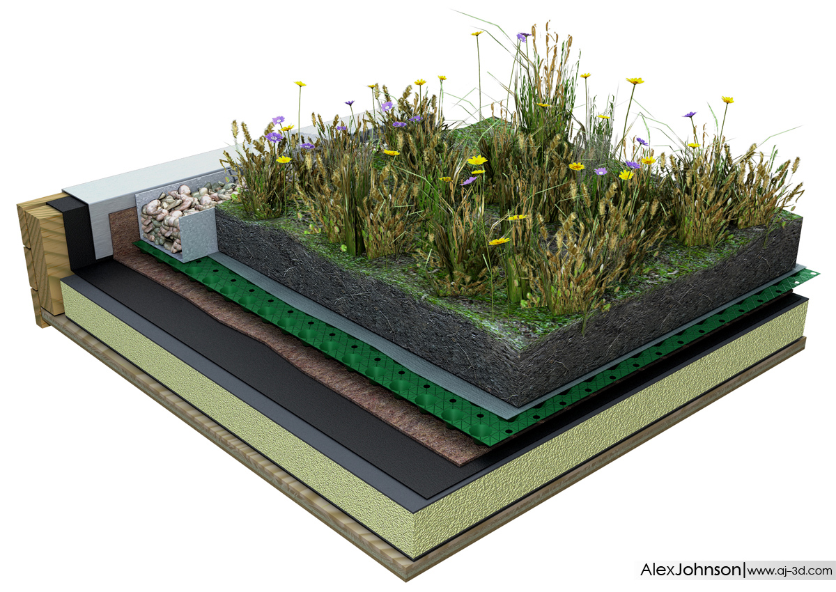 Green Roof Diagram Alex Johnson